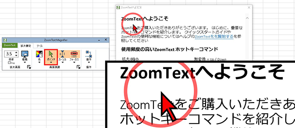 ZoomText画面の画像